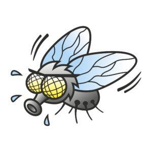 Lentävät hyönteiset